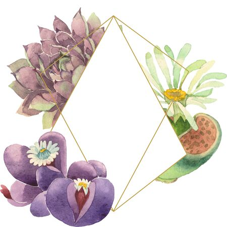 Succulent floral botanical flower. Wild spring leaf wildflower isolated.  background illustration set. Watercolour drawing fashion aquarelle. Frame border crystal ornament square. Stok Fotoğraf