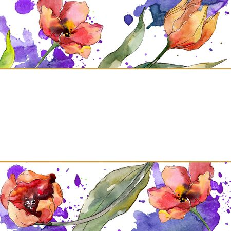 Red tulip floral botanical flower. Wild spring leaf wildflower isolated.  background illustration set. Watercolour drawing fashion aquarelle isolated. Frame border ornament square. Stock fotó