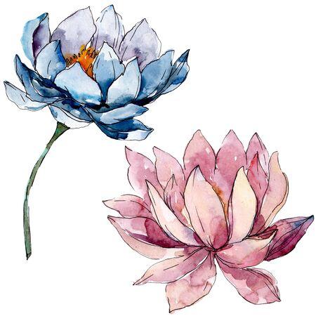 Lotus floral botanical flowers. Wild spring leaf wildflower isolated.  background illustration set. Watercolour drawing fashion aquarelle isolated. Isolated nelumbo illustration element.