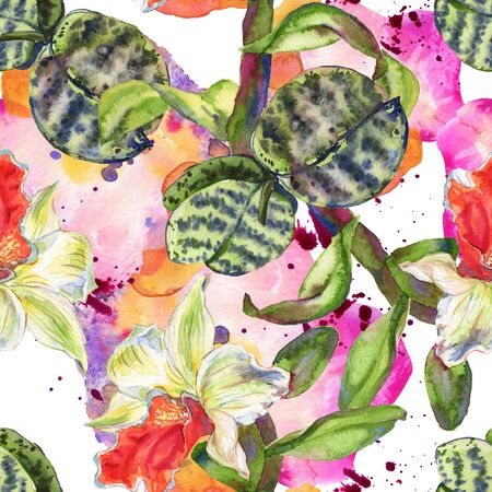 Orchid floral botanical flower. Wild spring leaf wildflower isolated.  background illustration set. Watercolour drawing fashion aquarelle isolated. 写真素材
