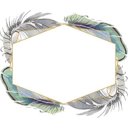 bird feather from wing isolated. Aquarelle feather for background, texture, wrapper pattern, frame or border. Frame border ornament square. Standard-Bild - 131686504