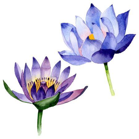 Blue lotus floral botanical flowers. Wild spring leaf wildflower.  background illustration set. Watercolour drawing fashion aquarelle. Isolated nelumbo illustration element. Foto de archivo - 131569669