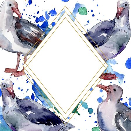 Sky bird seagull in a wildlife. Wild freedom, bird with a flying wings.  background illustration set. Watercolour drawing fashion aquarelle isolated. Frame border ornament square.