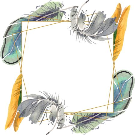 bird feather from wing isolated. Aquarelle feather for background, texture, wrapper pattern, frame or border. Frame border ornament square.