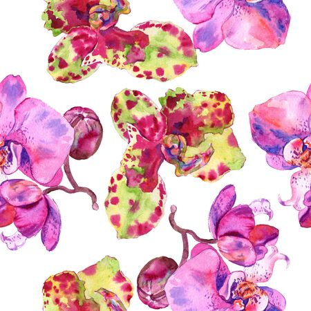 Orchid floral botanical flower. Wild spring leaf wildflower.  illustration set. Watercolour drawing fashion aquarelle. Seamless background pattern. Fabric wallpaper print texture. 스톡 콘텐츠