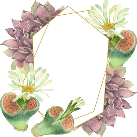 Succulent floral botanical flower. Wild spring leaf wildflower isolated.  background illustration set. Watercolour drawing fashion aquarelle. Frame border crystal ornament square. 스톡 콘텐츠