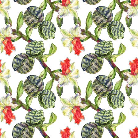 Orchid floral botanical flower. Wild spring leaf wildflower.  illustration set. Watercolour drawing fashion aquarelle. Seamless background pattern. Fabric wallpaper print texture. Stock Photo