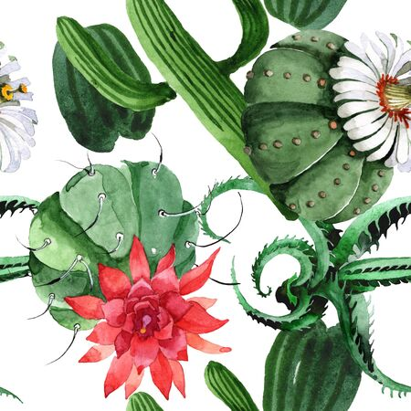 Green cactus floral botanical flower. Wild spring wildflower.  illustration set. Watercolour drawing fashion aquarelle. Seamless background pattern. Fabric wallpaper print texture.