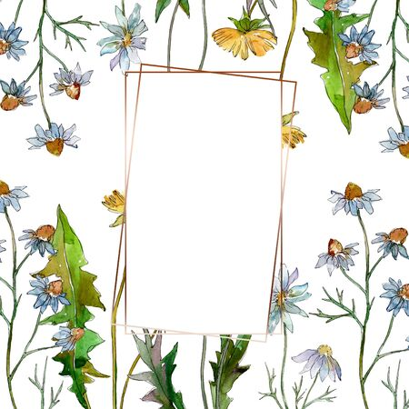 Wildflowers floral botanical flowers. Wild spring leaf wildflower isolated.  background illustration set. Watercolour drawing fashion aquarelle isolated. Frame border ornament square.