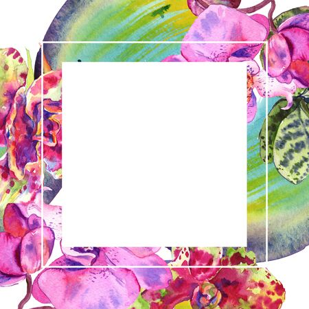 Orchid floral botanical flower. Wild spring leaf wildflower isolated.  background illustration set. Watercolour drawing fashion aquarelle isolated. Frame border ornament square.