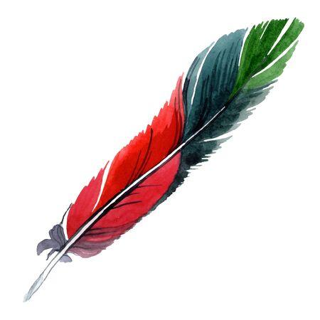 Bunte Vogelfeder vom Flügel isoliert. Hintergrundillustrationssatz. Aquarellzeichnung Mode Aquarell isoliert. Isoliertes Federillustrationselement. Standard-Bild