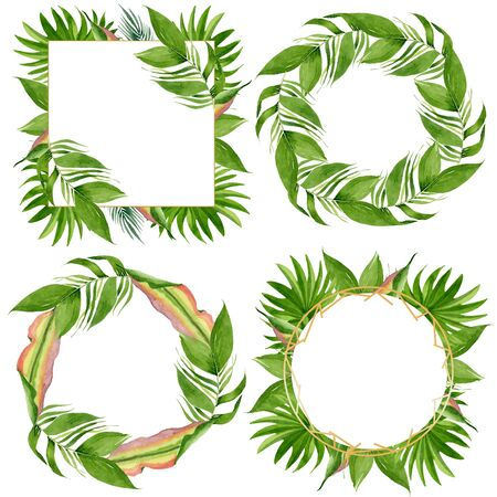 Exotic tropical hawaiian summer. Palm beach tree leaves jungle botanical.  background illustration set. Watercolour drawing fashion aquarelle. Frame border crystal ornament square. Stock fotó