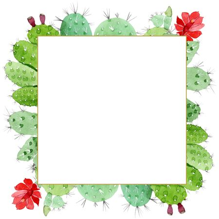 Green cactus floral botanical flowers. Wild spring leaf wildflower.  background illustration set. Watercolour drawing fashion aquarelle. Frame border ornament square. Stok Fotoğraf