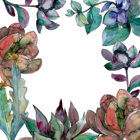 Succulents floral botanical flowers. Wild spring leaf wildflower isolated.  background illustration set. Watercolour drawing fashion aquarelle isolated. Frame border ornament square. Banque d'images - 130810538