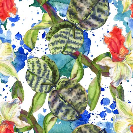 Orchid floral botanical flower. Wild spring leaf wildflower.  illustration set. Watercolour drawing fashion aquarelle. Seamless background pattern. Fabric wallpaper print texture. Zdjęcie Seryjne