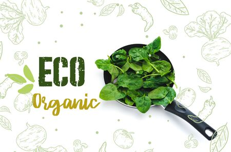 green fresh spinach leaves in frying pan on white background with eco organic lettering