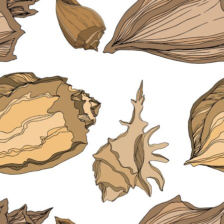 Vector Summer beach seashell tropical elements. Brown beige Engraved ink art. Seamless background pattern. Fabric wallpaper print texture on white background.
