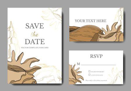 Vector Elementos tropicales de concha de playa de verano. Arte de tinta grabada marrón beige. Cenefa decorativa de la tarjeta de fondo de boda. Gracias, rsvp, banner de conjunto gráfico de ilustración de tarjeta elegante de invitación.