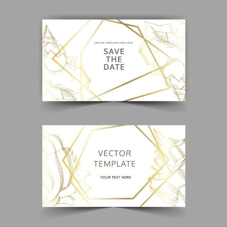 Vector Summer beach seashell tropical elements. Black and white engraved ink art. Wedding background card decorative border. Thank you, rsvp, invitation elegant card illustration graphic set banner. Çizim