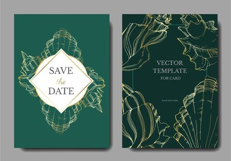 Vector Summer beach seashell tropical elements. Black and white engraved ink art. Wedding background card decorative border. Thank you, rsvp, invitation elegant card illustration graphic set banner. 向量圖像