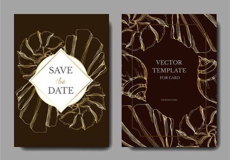 Vector Summer beach seashell tropical elements. Black and white engraved ink art. Wedding background card decorative border. Thank you, rsvp, invitation elegant card illustration graphic set banner. Illustration