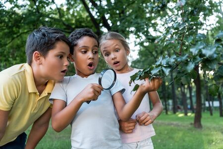 shocked multicultural kids looking at green leaves though magnifier
