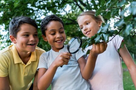 selective focus of cheerful multicultural children looking at leaves through magnifier Stockfoto