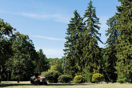 lawn mower on green grass near trees in park Stockfoto