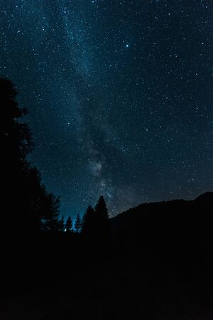 milky way on blue sky in woods at night Banque d'images