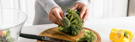 panoramic shot of woman holding green broccoli near bowl and paprika