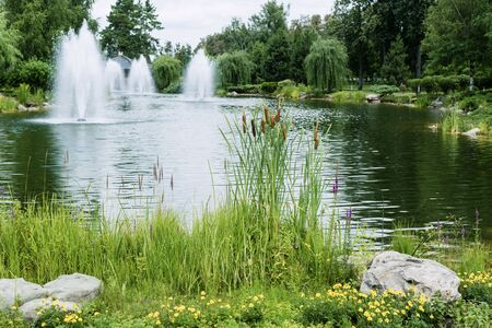 selective focus of reeds near stones and pond with fountains 版權商用圖片