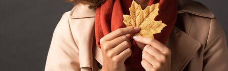 panoramic shot of woman in trench coat holding golden maple leaf on black background Stock Photo