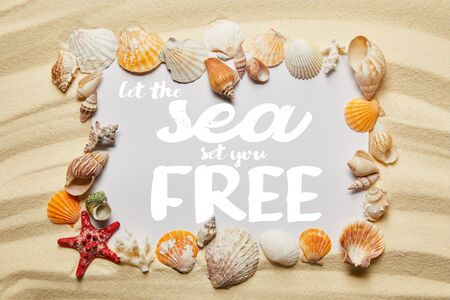 frame of seashells around let the sea set you free lettering on sandy beach Banco de Imagens