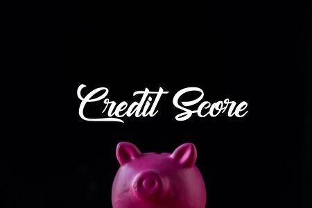 pink piggy bank near credit score lettering on black 版權商用圖片