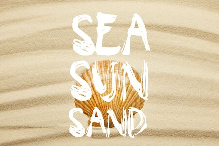 orange seashell on curve sandy beach in summertime with sea, sun and sand words Banco de Imagens