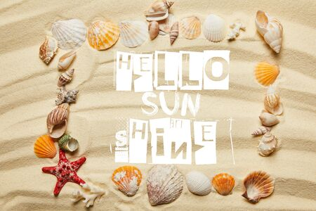 top view of frame with hello sunshine lettering, seashells, starfish and corals on sandy beach