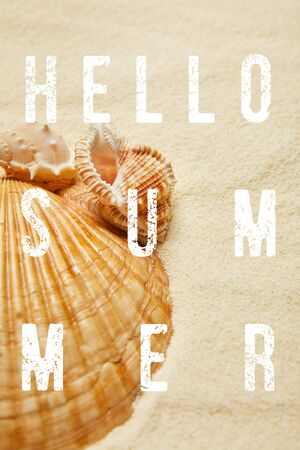 selective focus of seashells on beach with golden sand with hello summer illustration