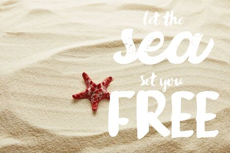 red starfish on sand with let the sea set you free lettering Banco de Imagens