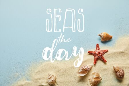 top view of sand with seashells and starfish on blue background with seas the day lettering