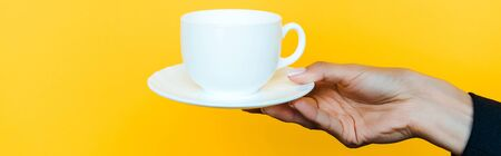 panoramic shot of woman holding saucer and cup isolated on orange