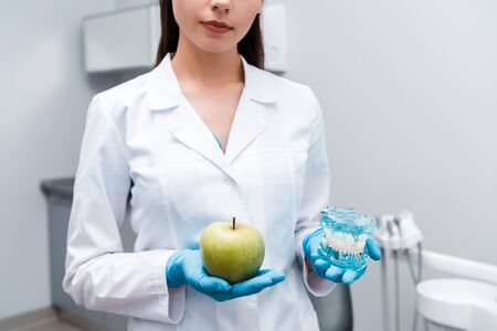 cropped view of dentist holding teeth model and tasty apple