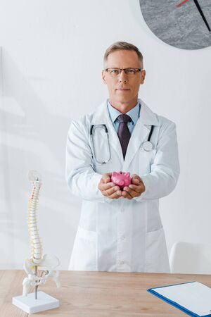 man in white coat and glasses holding piggy bank near spine model Banque d'images - 131880912