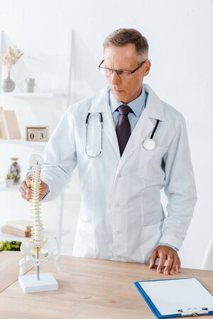 handsome doctor in glasses and white coat touching spine model 写真素材