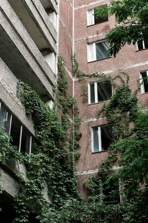 low angle view of abandoned building with overgrown green leaves in chernobyl