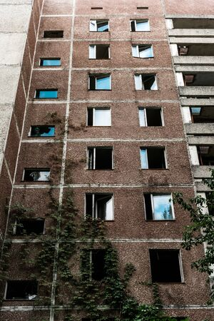 low angle view of green mold on abandoned brown building in chernobyl