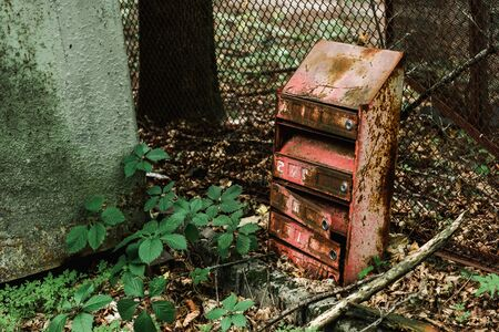 vintage and rusty mail box near green leaves
