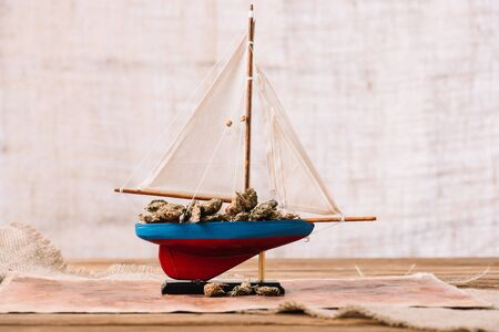 decorative ship with dry plant lumps on wooden surface Фото со стока