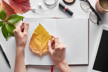 cropped view of female hands near yellow and red leaves, notebook, cosmetics, digital tablet, glasses and earphones on white table Archivio Fotografico - 133583896