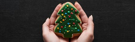 cropped view of woman holding Christmas tree cookie in hands on black wooden table, panoramic shot Stok Fotoğraf
