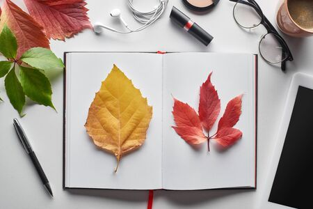 top view of colorful red and yellow leaves of wild grapes and alder near notebook, cosmetics, glasses, coffee cup and digital tablet on white table Archivio Fotografico - 133862315